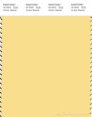 PANTONE SMART 12-0825X Color Swatch Card, Popcorn