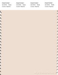 PANTONE SMART 12-1108X Color Swatch Card, Dew