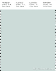 PANTONE SMART 12-4806X Color Swatch Card, Chalk Blue