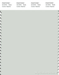 PANTONE SMART 12-5203X Color Swatch Card, Murmur