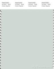 PANTONE SMART 12-5403X Color Swatch Card, Blue Flower
