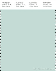 PANTONE SMART 12-5505X Color Swatch Card, Glacier