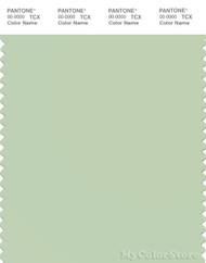 PANTONE SMART 13-0111X Color Swatch Card, Seacrest