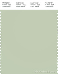PANTONE SMART 13-0210X Color Swatch Card, Fog Green