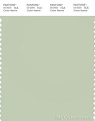 PANTONE SMART 13-0210X Color Swatch Card, Fog Green