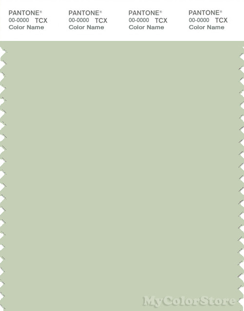 PANTONE SMART 13-0212X Color Swatch Card, Very Pale Green