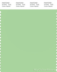 PANTONE SMART 13-0221X Color Swatch Card, Pistachio Green