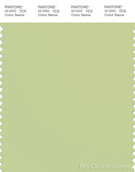 PANTONE SMART 13-0317X Color Swatch Card, Lily Green