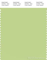 PANTONE SMART 13-0324X Color Swatch Card, Lettuce Green