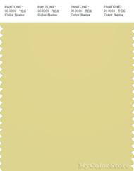 PANTONE SMART 13-0333X Color Swatch Card, Lima Bean