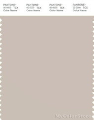 PANTONE SMART 13-0403X Color Swatch Card, Gray Morn