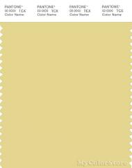 PANTONE SMART 13-0720X Color Swatch Card, Custard