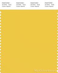PANTONE SMART 13-0746X Color Swatch Card, Maize
