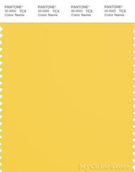 PANTONE SMART 13-0755X Color Swatch Card, Primrose Yellow