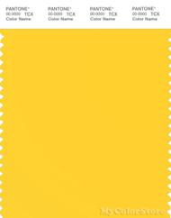PANTONE SMART 13-0758X Color Swatch Card, Dandelion
