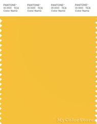 PANTONE SMART 13-0759X Color Swatch Card, Solar Power