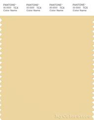 PANTONE SMART 13-0822X Color Swatch Card, Sunlight