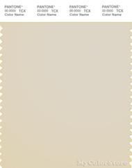 PANTONE SMART 13-0905X Color Swatch Card, Birch