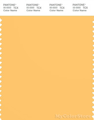 PANTONE SMART 13-0945X Color Swatch Card, Pale Marigold