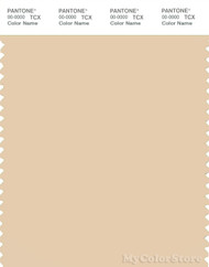 PANTONE SMART 13-1010X Color Swatch Card, Gray Sand