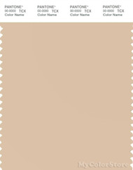 PANTONE SMART 13-1011X Color Swatch Card, Ivory Cream