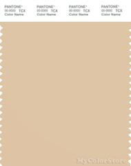 PANTONE SMART 13-1016X Color Swatch Card, Wheat