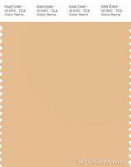 PANTONE SMART 13-1018X Color Swatch Card, Desert Dust