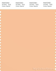 PANTONE SMART 13-1019X Color Swatch Card, Cream Blush