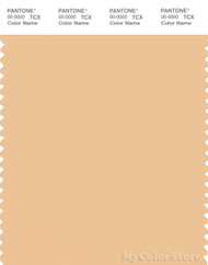 PANTONE SMART 13-1024X Color Swatch Card, Buff