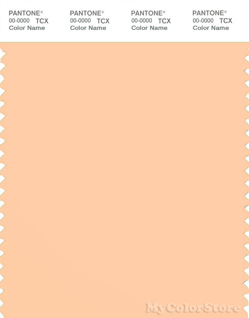 PANTONE SMART 13-1026X Color Swatch Card, Creampuff