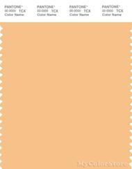PANTONE SMART 13-1030X Color Swatch Card, Sunburst