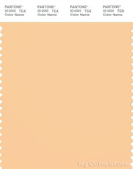 PANTONE SMART 13-1031X Color Swatch Card, Apricot Sherbert