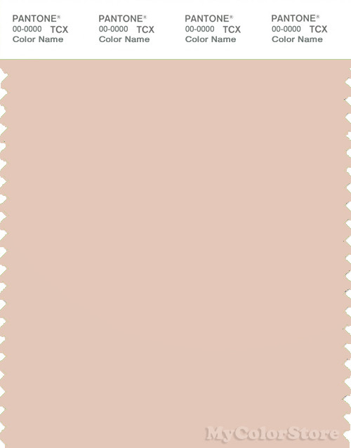 PANTONE SMART 13-1108X Color Swatch Card, Cream Tan