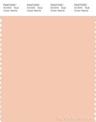 PANTONE SMART 13-1114X Color Swatch Card, Bellini