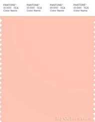 PANTONE SMART 13-1318X Color Swatch Card, Tropical Peach