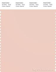PANTONE SMART 13-1404X Color Swatch Card, Pale Dogwood