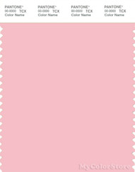 PANTONE SMART 13-2006X Color Swatch Card, Almond Blossom