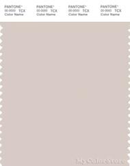 PANTONE SMART 13-3801X Color Swatch Card, Crystal Gray