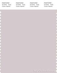 PANTONE SMART 13-3804X Color Swatch Card, Gray Lilac