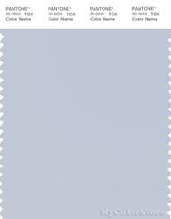 PANTONE SMART 13-4110X Color Swatch Card, Arctic Ice