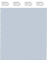 PANTONE SMART 13-4111X Color Swatch Card, Plein Air