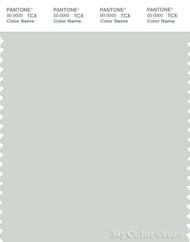 PANTONE SMART 13-4305X Color Swatch Card, Foggy Dew