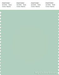 PANTONE SMART 13-5907X Color Swatch Card, Gossamer Green
