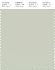 PANTONE SMART 13-6105X Color Swatch Card, Celadon Tint