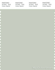 PANTONE SMART 13-6106X Color Swatch Card, Green Tint