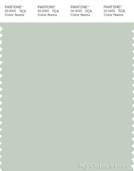 PANTONE SMART 13-6107X Color Swatch Card, Green Lily