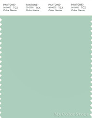 PANTONE SMART 13-6110X Color Swatch Card, Mist Green