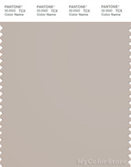 PANTONE SMART 14-0000X Color Swatch Card, Silver Gray