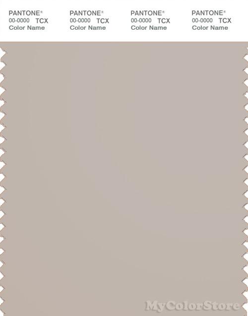 PANTONE SMART 14-0000X Color Swatch Card, Silver Gray