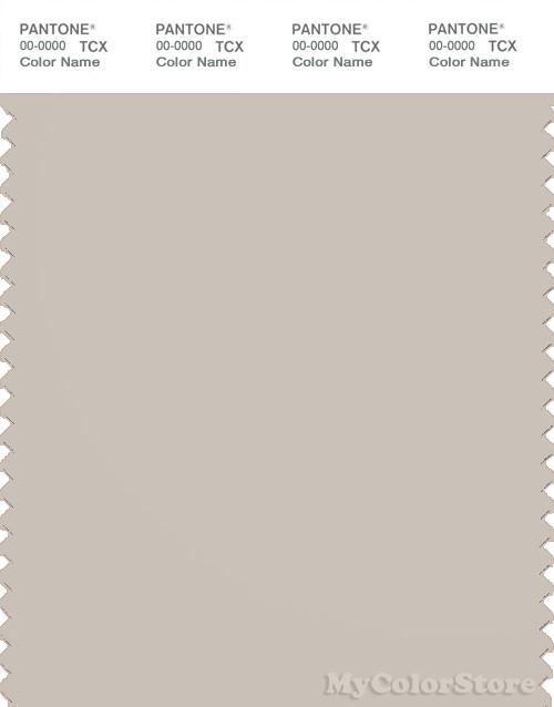 PANTONE SMART 14-0002X Color Swatch Card, Pumice Stone